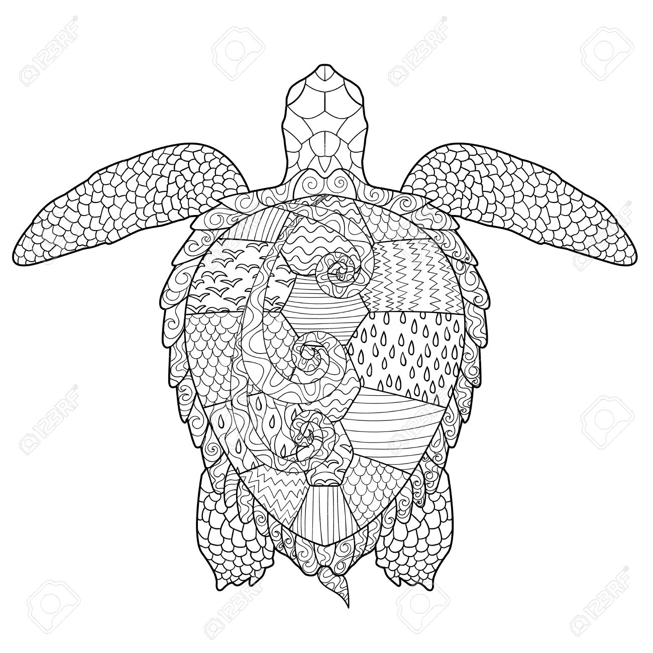 1300x1300 Sea Turtle With High Details. Adult Antistress Coloring Page