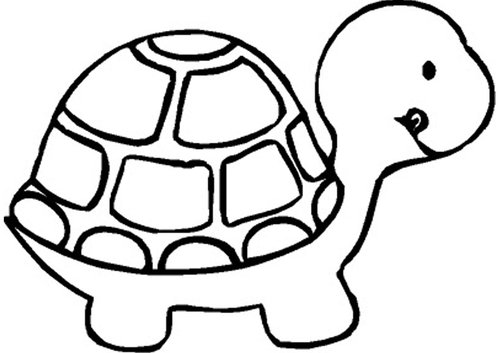 500x353 Turtle Black And White Clipart