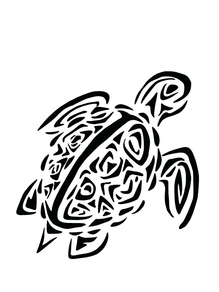 736x981 Turtle Clipart Turtle Sea Turtle Clipart Black And White