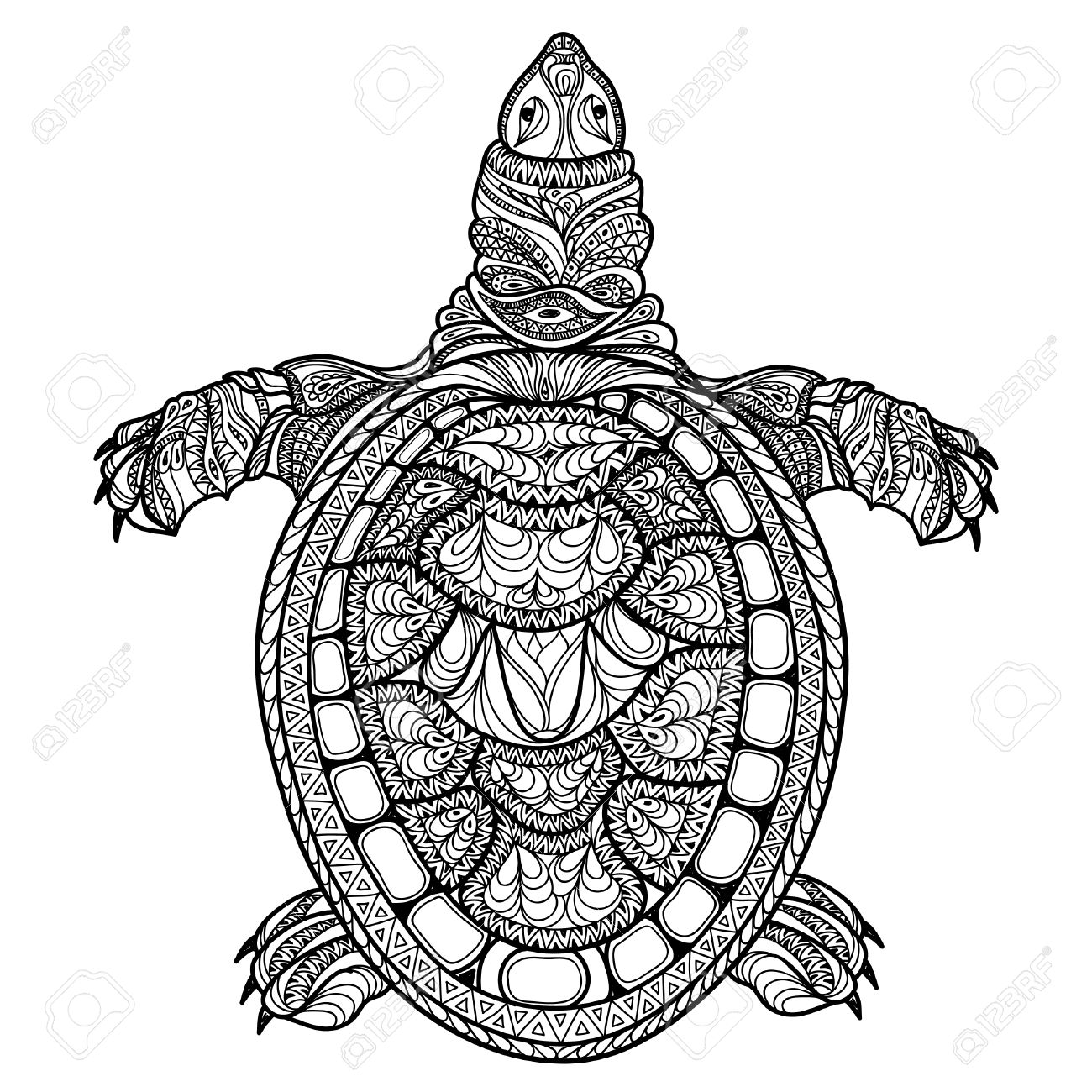 1300x1300 Turtle Isolated. Zentangle Tribal Stylized Turtle. Doodle Vector