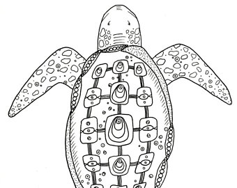 340x270 Turtle Drawing Etsy