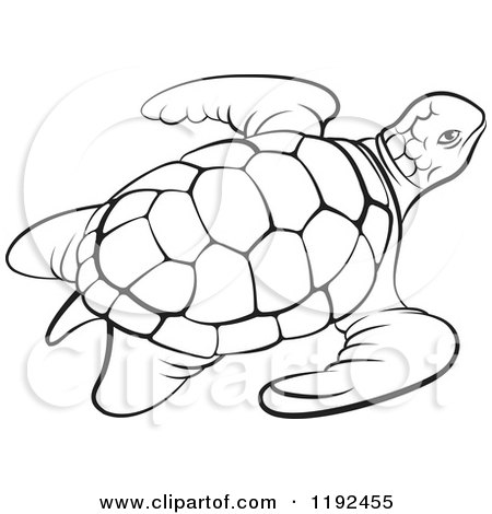 450x470 Clipart Of A Black And White Sea Turtle