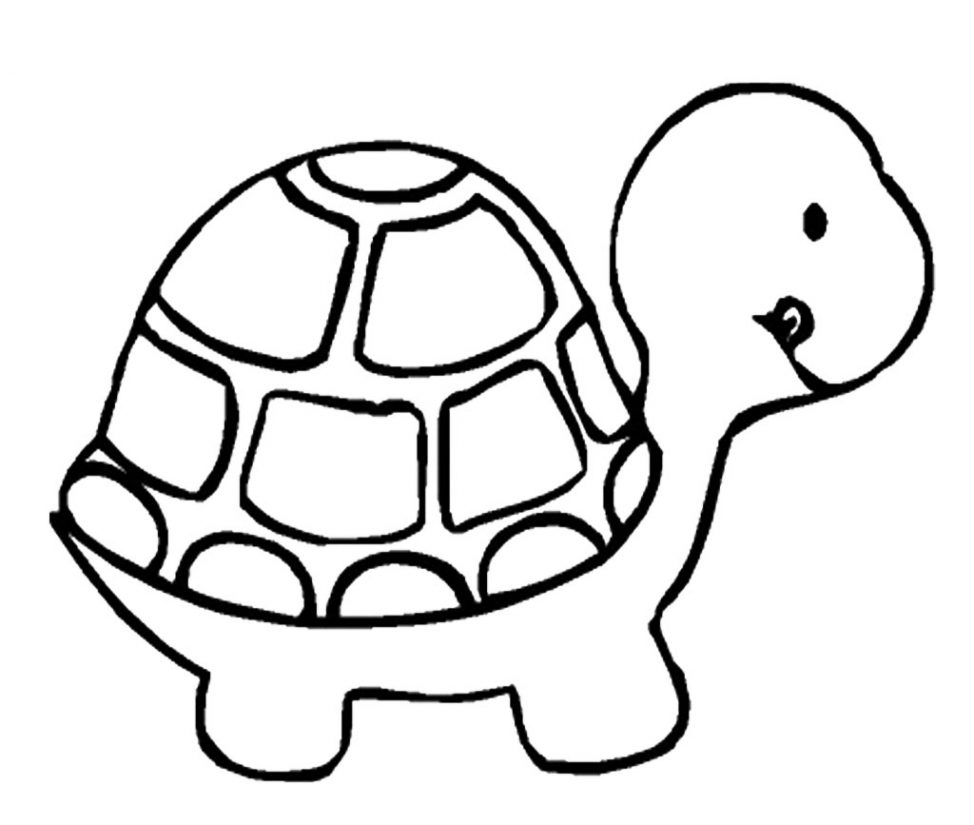 974x825 Coloring Pages Cartoon Turtle Drawing A Of How To Draw