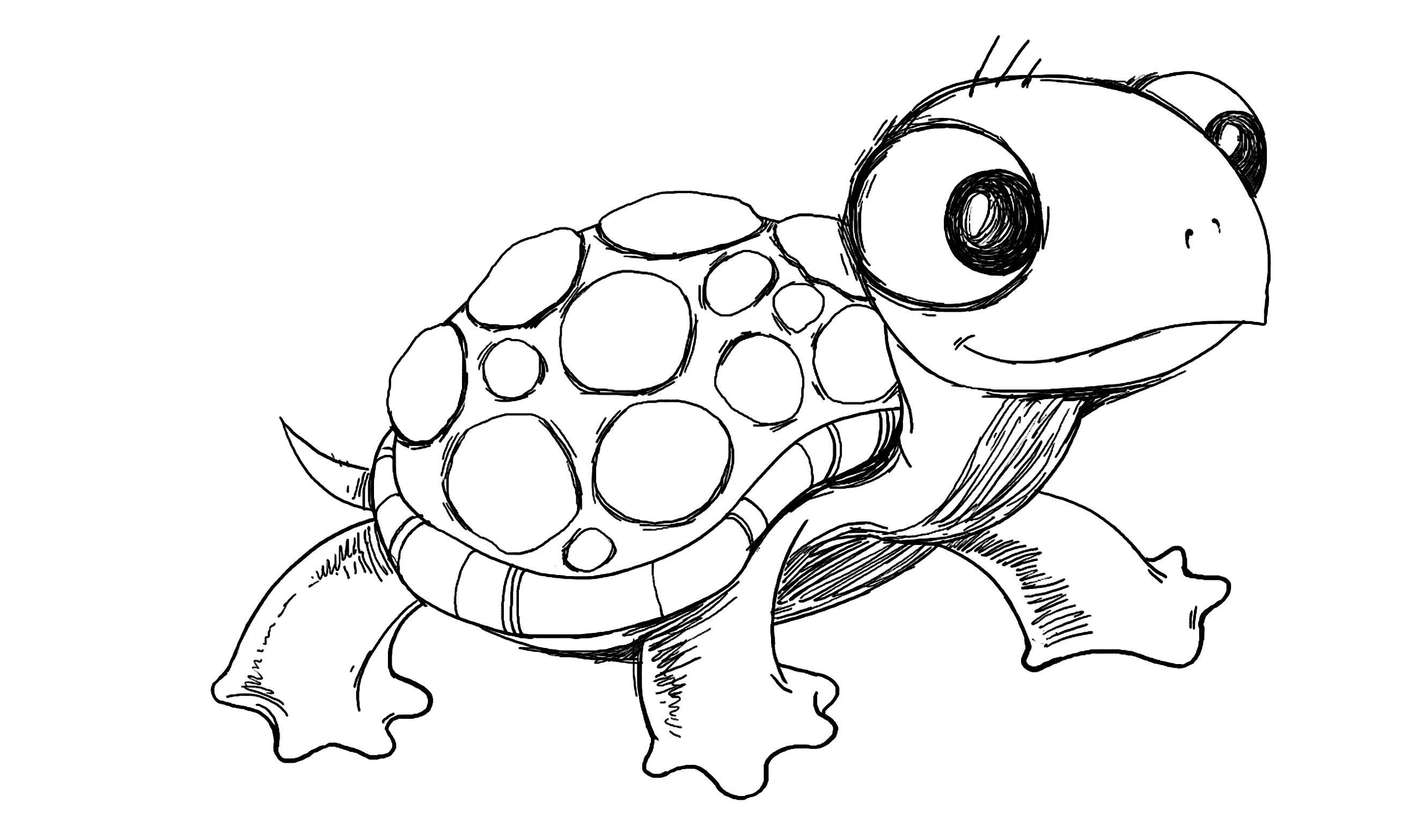 2652x1566 Easy Sea Turtle Drawing