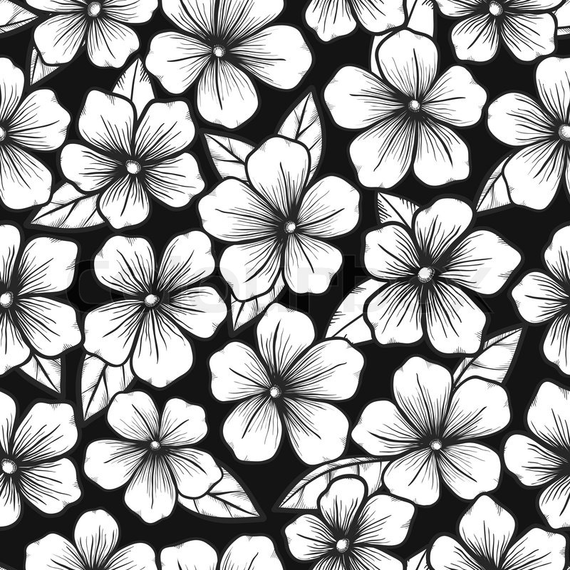 800x800 beautiful black and white seamless background with graphic outline