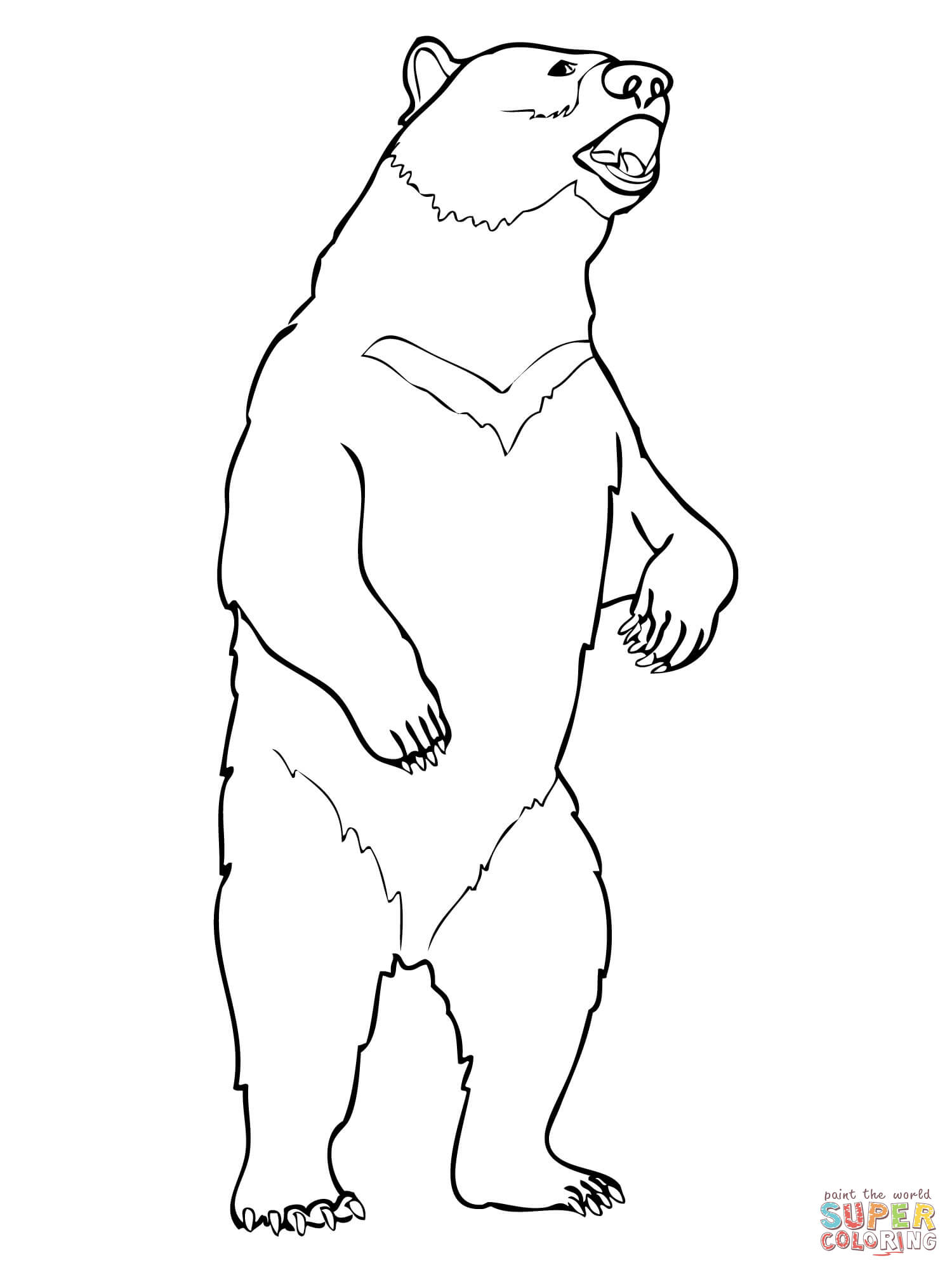 1500x2000 Black Bear Drawings Moon Bear Coloring Page Free Printable