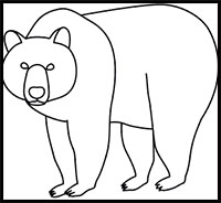 200x184 How To Draw Bears Drawing Tutorials Amp Drawing Amp How To Draw