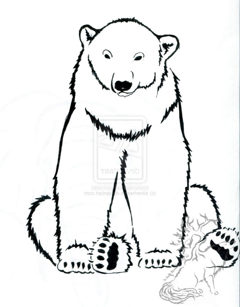 Black Bear Drawing Outline at GetDrawings.com | Free for personal ...