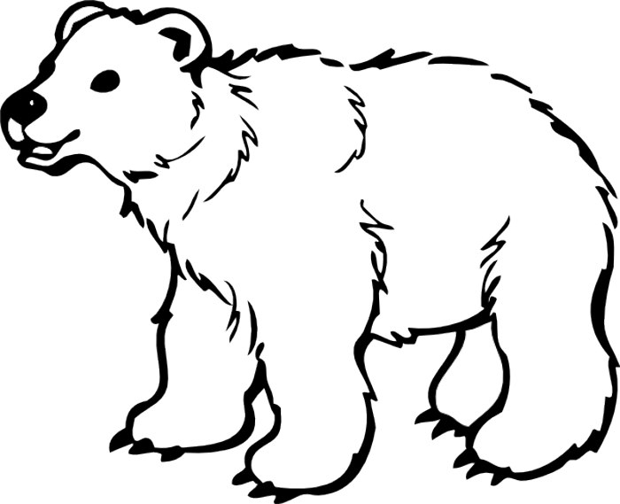 black bear drawing outline at getdrawings com free for personal rh getdrawings com polar bear clipart black and white brown bear clipart black and white
