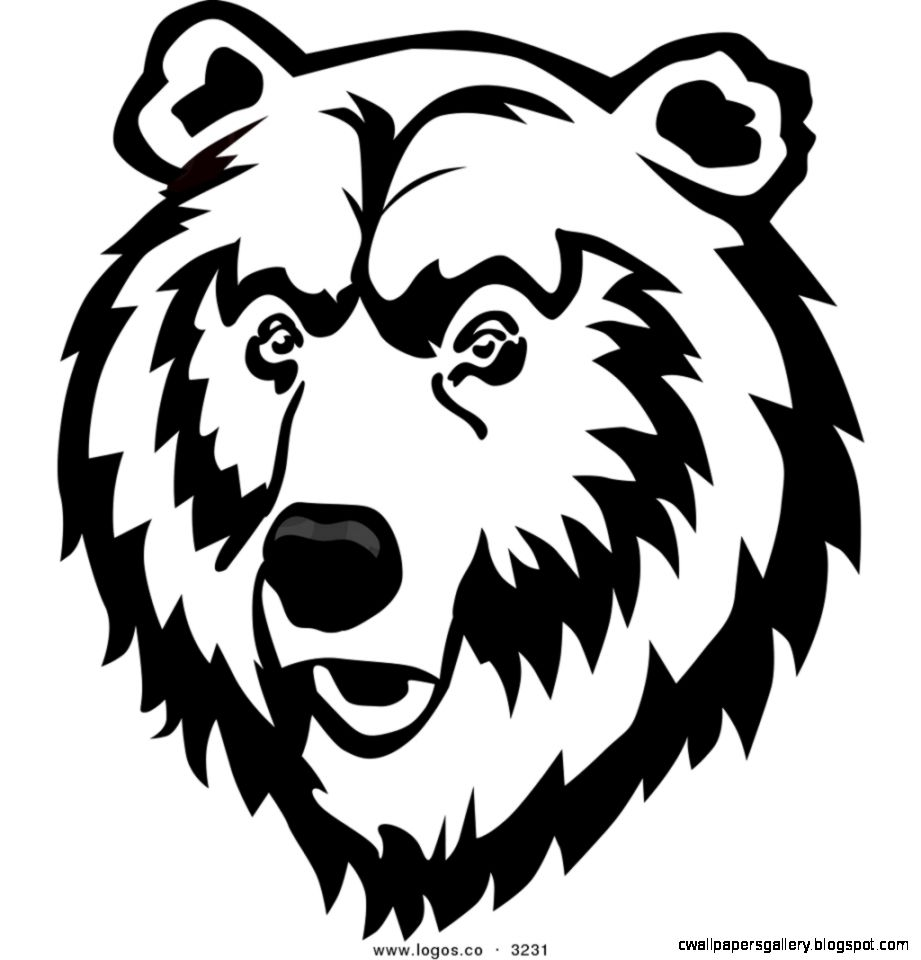 921x960 Bear Face Drawing Wallpapers Gallery