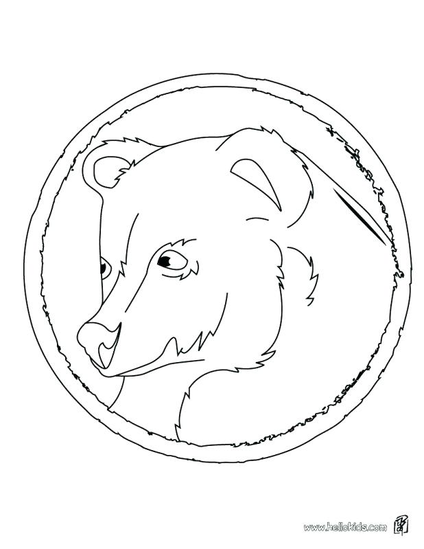 618x799 Black Bear Coloring Page Standing Black Bear Drawing Black Bear