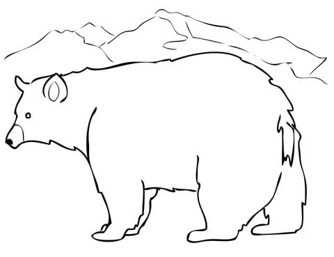 480x369 Black Bear Coloring Page Free Printable Coloring Pages