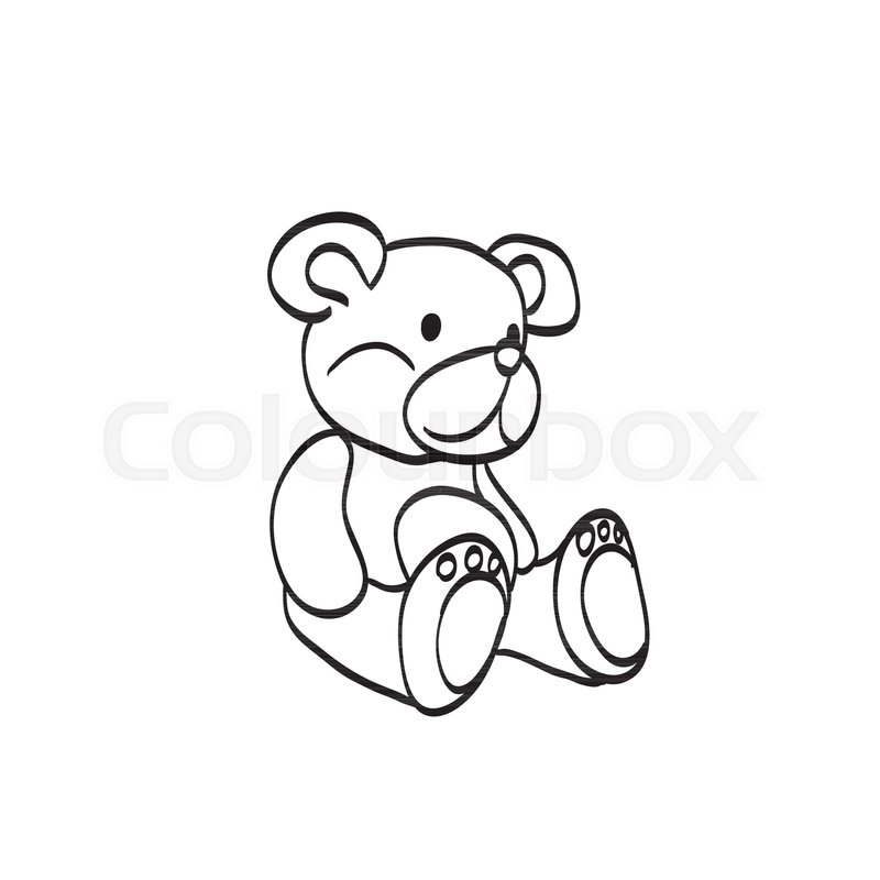 800x800 Teddy Bear Sketch. Drawing On A White Background Stock Vector