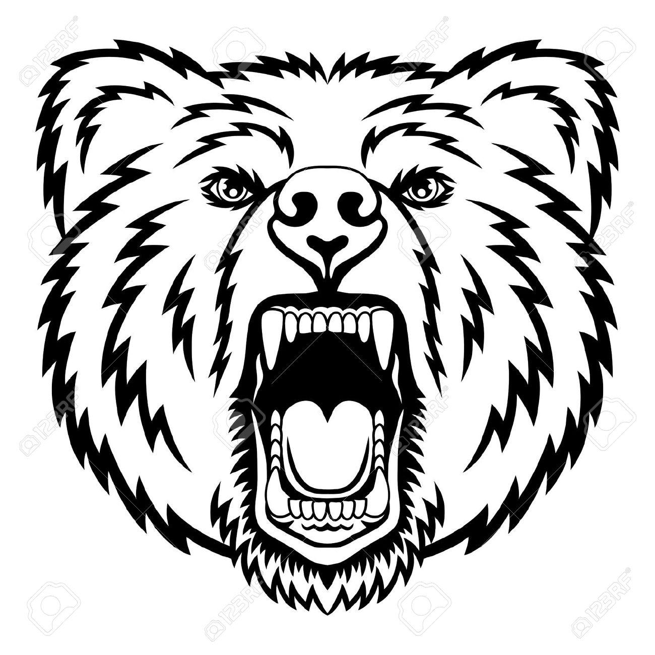1300x1300 Bear Head Drawing