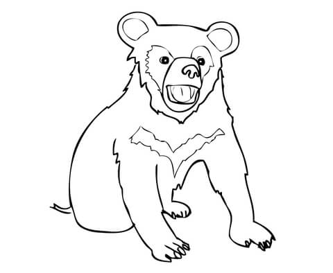 480x394 Asia Black Bear Cub Coloring Page Free Printable Coloring Pages