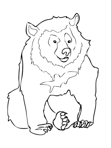 360x480 Asiatic Black Bear Coloring Page Free Printable Coloring Pages