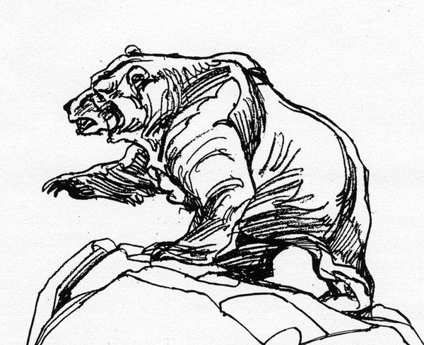 600x488 Grizzly Bear Line Art Stl