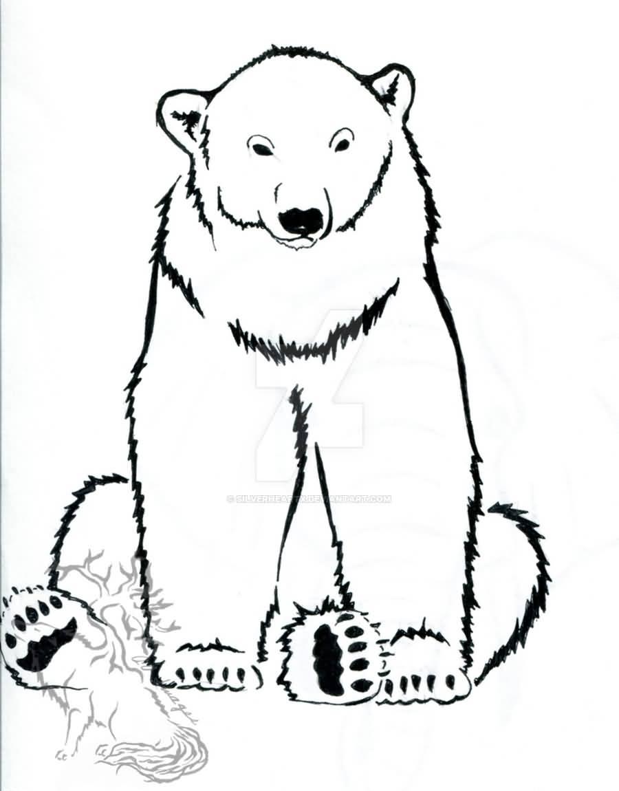 900x1150 Polar Bear Line Drawing