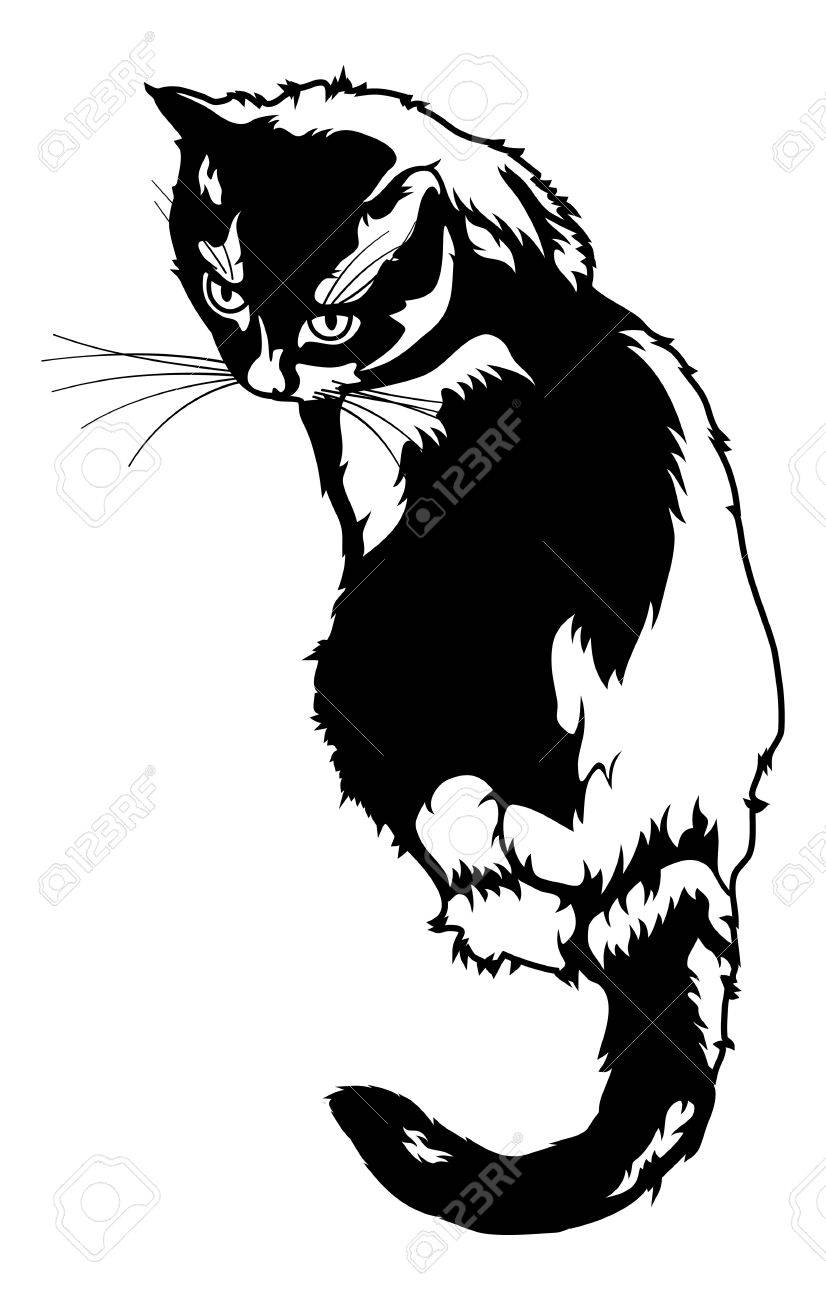 826x1300 Black Cat Silhouette Isolated On A White Background Royalty Free