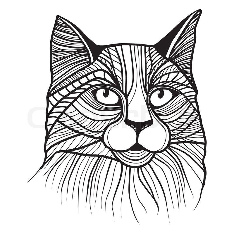 800x800 Cat Head Vector Animal Illustration For T Shirt. Sketch Tattoo