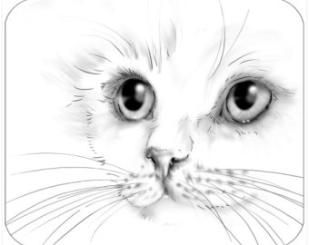 340x270 Face Drawing Etsy