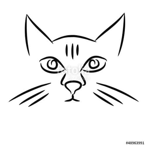 500x500 Cat Face Sketch Stock Image And Royalty Free Vector Files