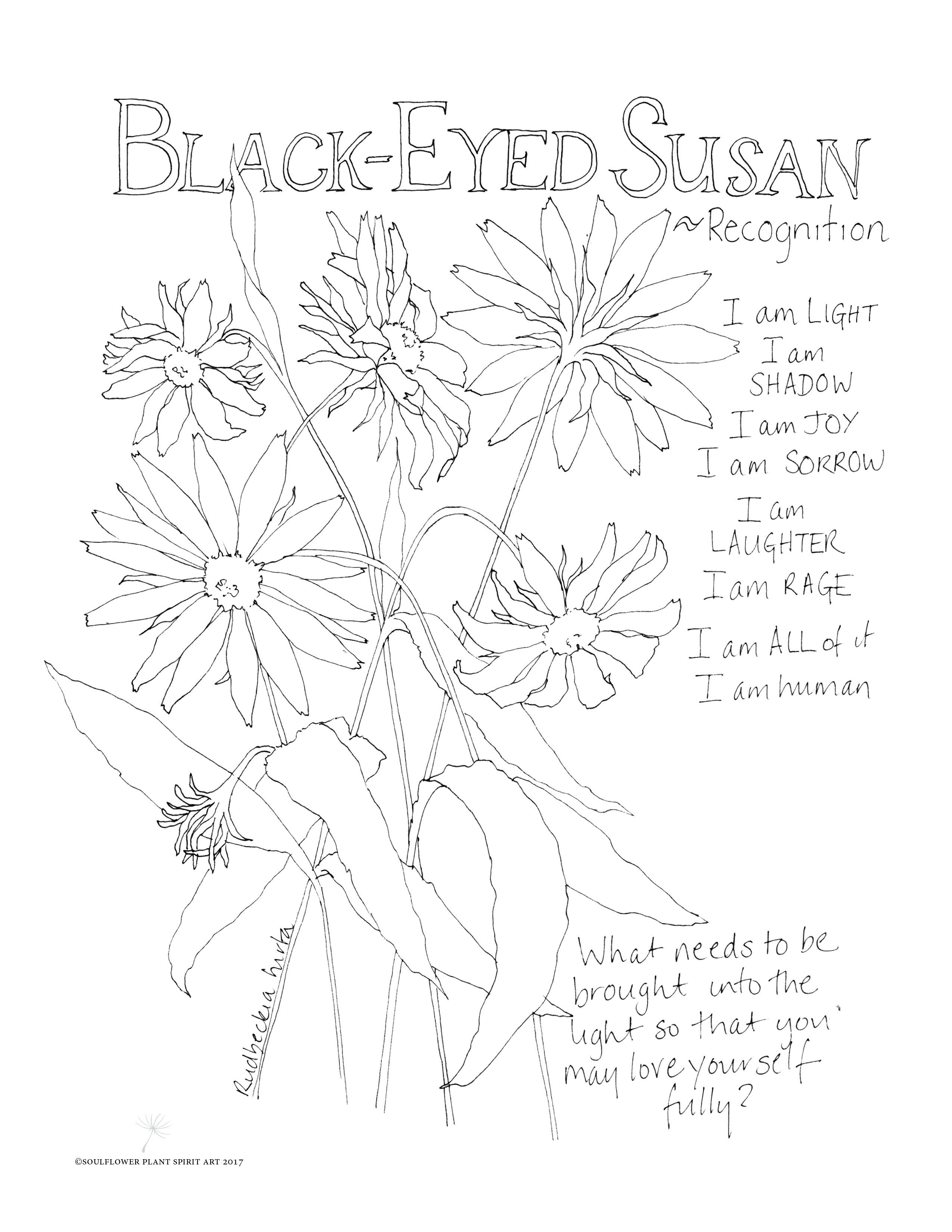 2550x3300 Black Eyed Susan Coloring Page