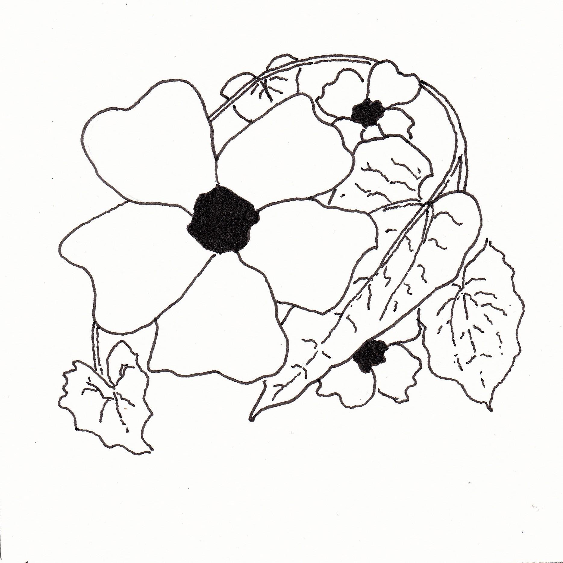 1869x1869 Black Eyed Susan