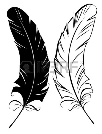 343x450 Artistically Drawn, Black And White Feather On A White Background