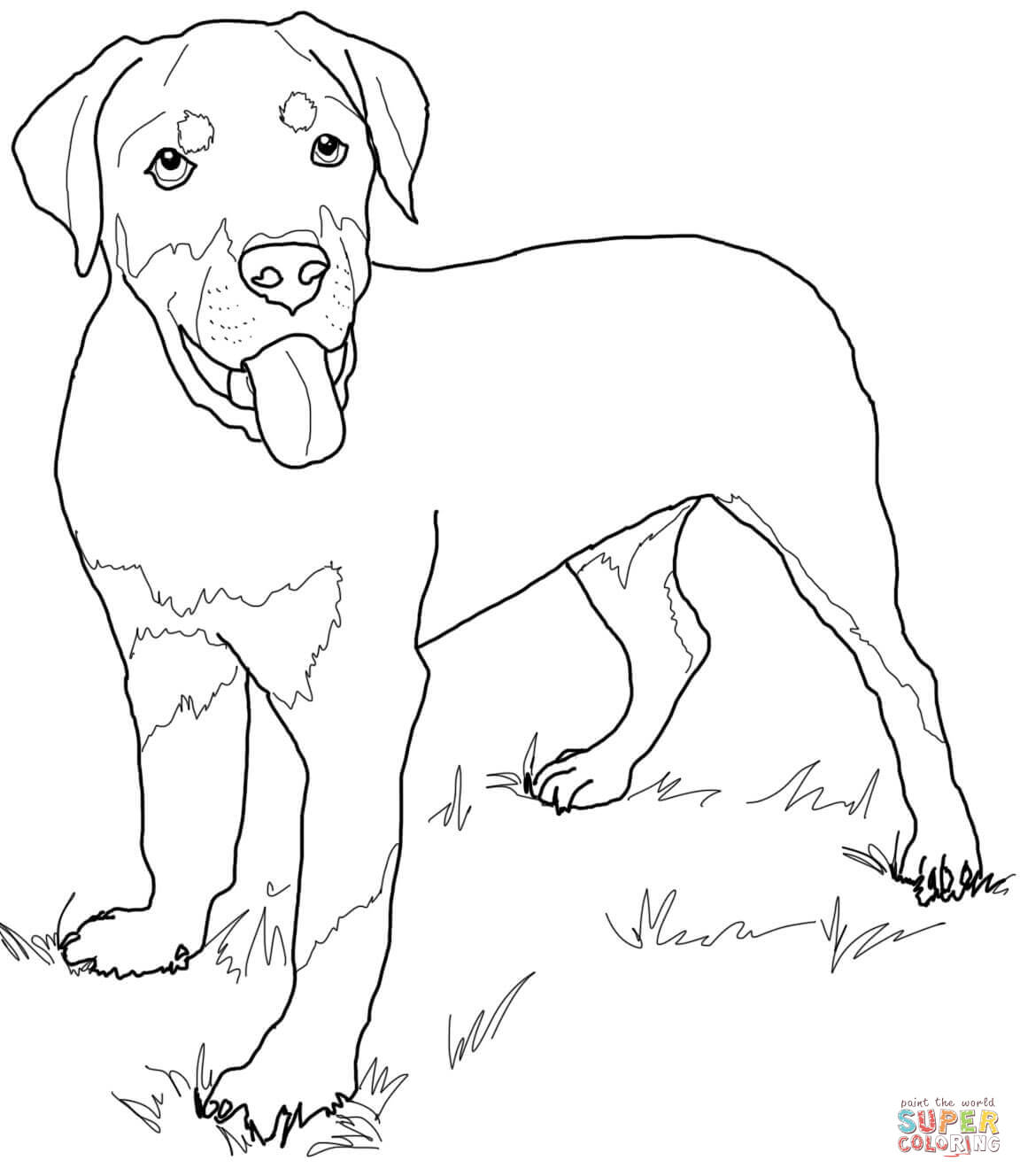 1152x1328 Free Black Lab Coloring Pages