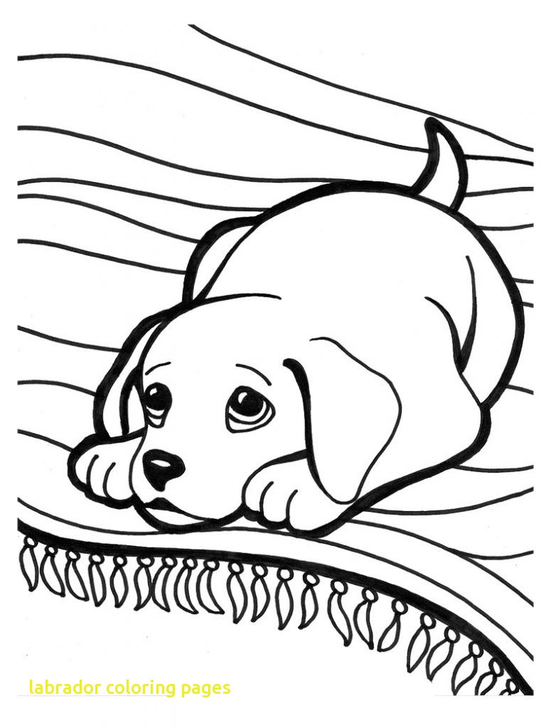 785x1024 Labrador Coloring Pages With Black Lab Coloring Pages 4109