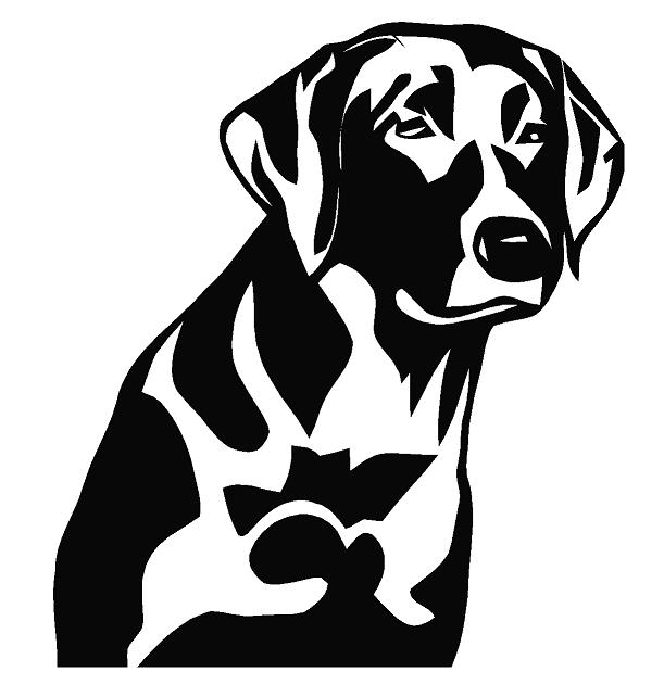 611x642 Animals Decal Doctorz, Saving You Money One Decal At A Time