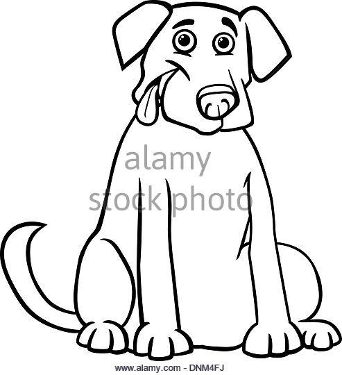 493x540 Black Labrador Stock Vector Images
