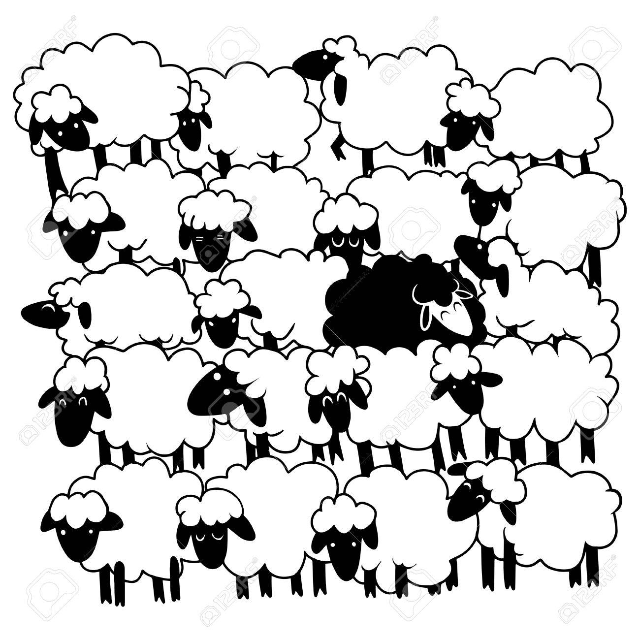 1300x1300 Black Sheep Amongst White Sheep ,single Black Sheep In White