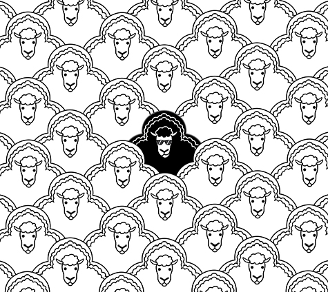 475x424 Alfiealpha The Black Sheep