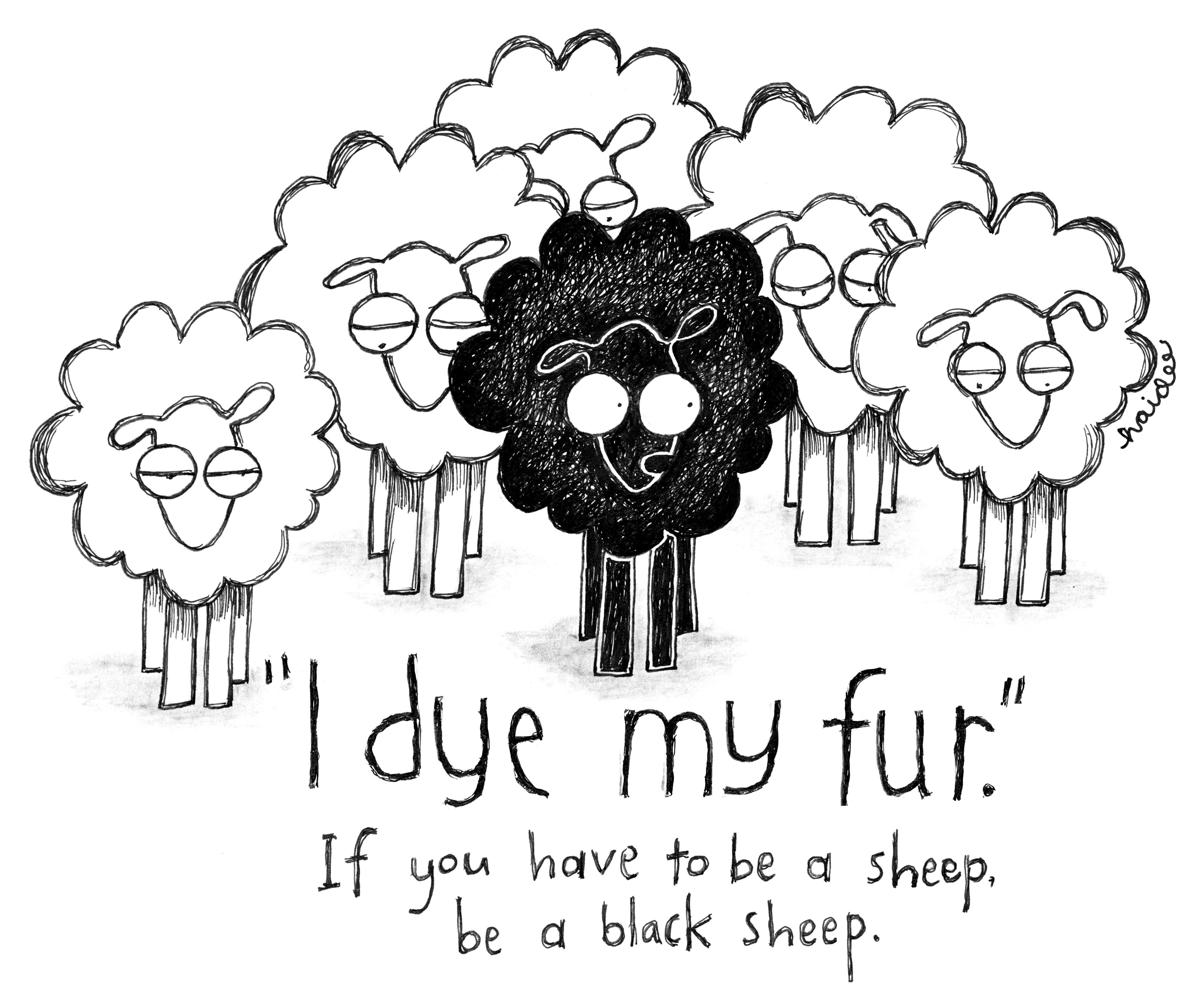 4034x3367 One Sheep, Two Sheep Haidee Merritt