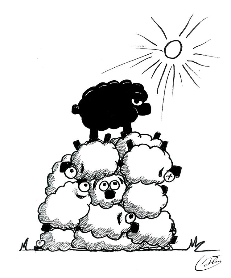 749x900 Top Sheep By Nemrot
