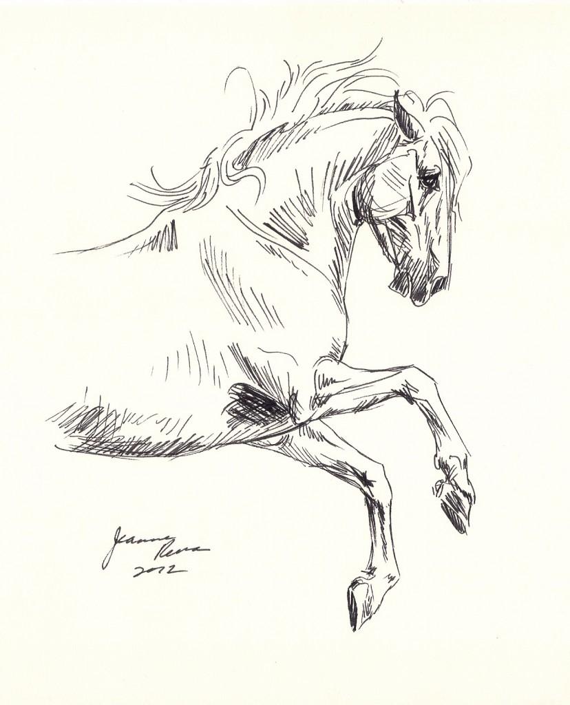 828x1024 Pride Sketch Equine Art By Jeanne Rewa