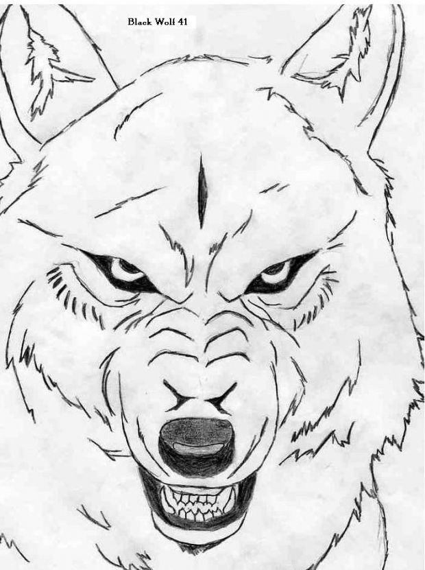 620x831 290 Best Wolf's Rain Images On Wolf's Rain, Wolves