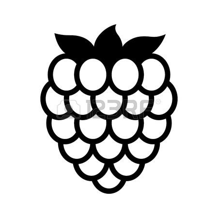 450x450 145 Blackberry Farm Fruit Food Leaves Stock Illustrations