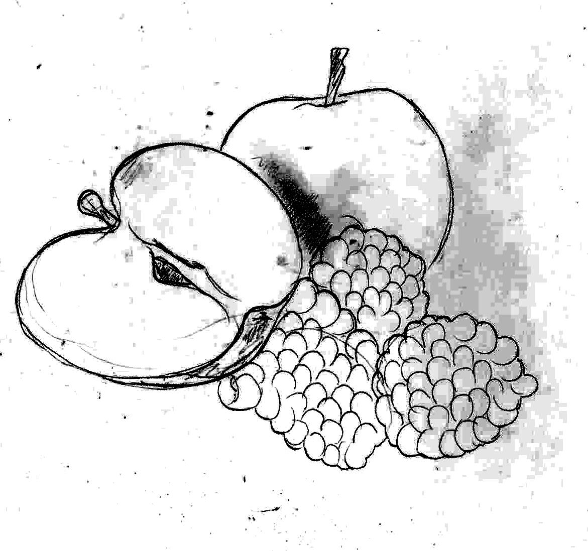 1171x1098 Website Design For Fruit Juice Brand Hamzaa Valli