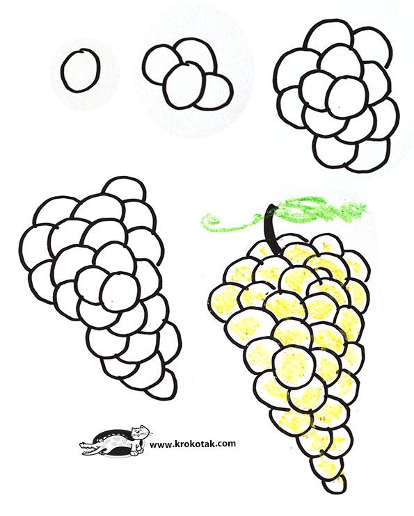 595x742 Krokotak How To Draw Raspberry, Blackberry, Grapes