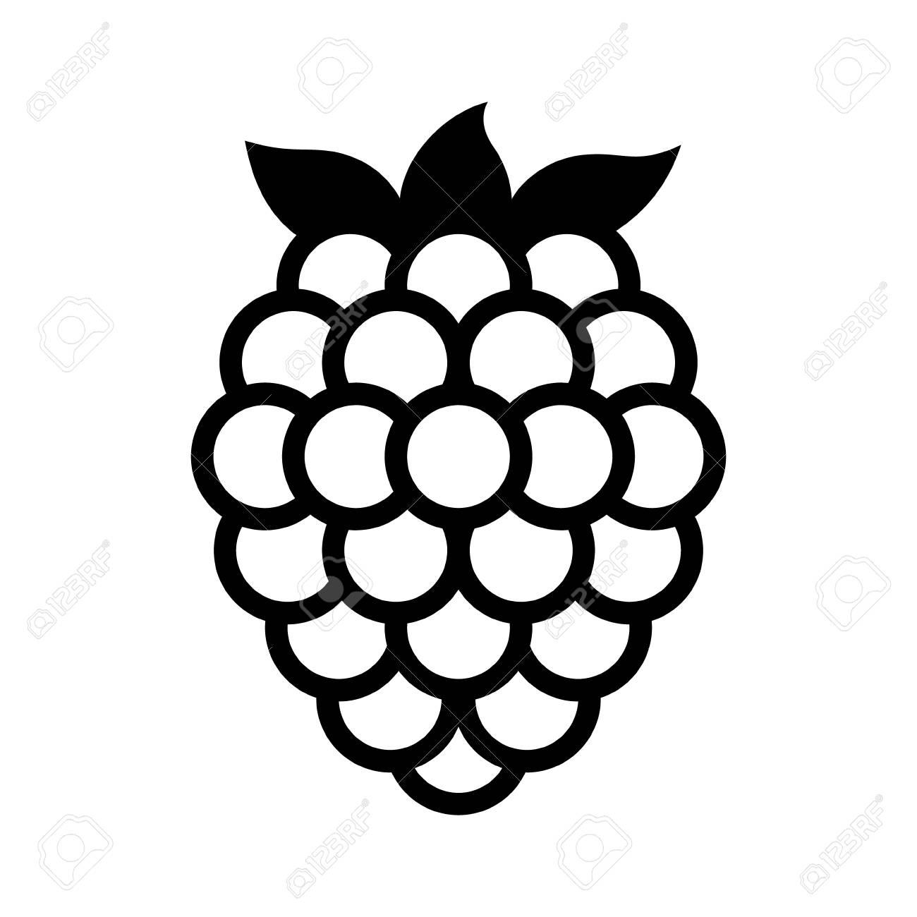 1300x1300 Blackberry Fruit Or Blackberries Line Art Vector Icon For Food