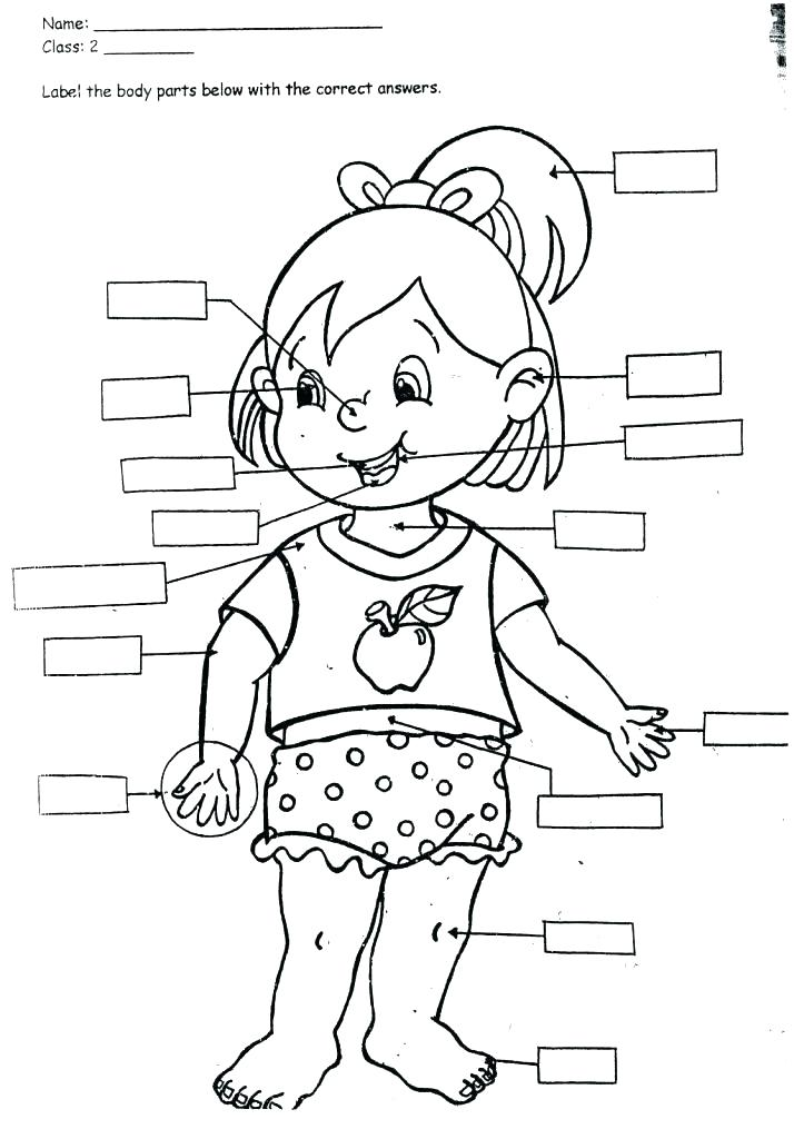 714x1024 Body Coloring Pages Body Coloring Page With Gallery Blank Body