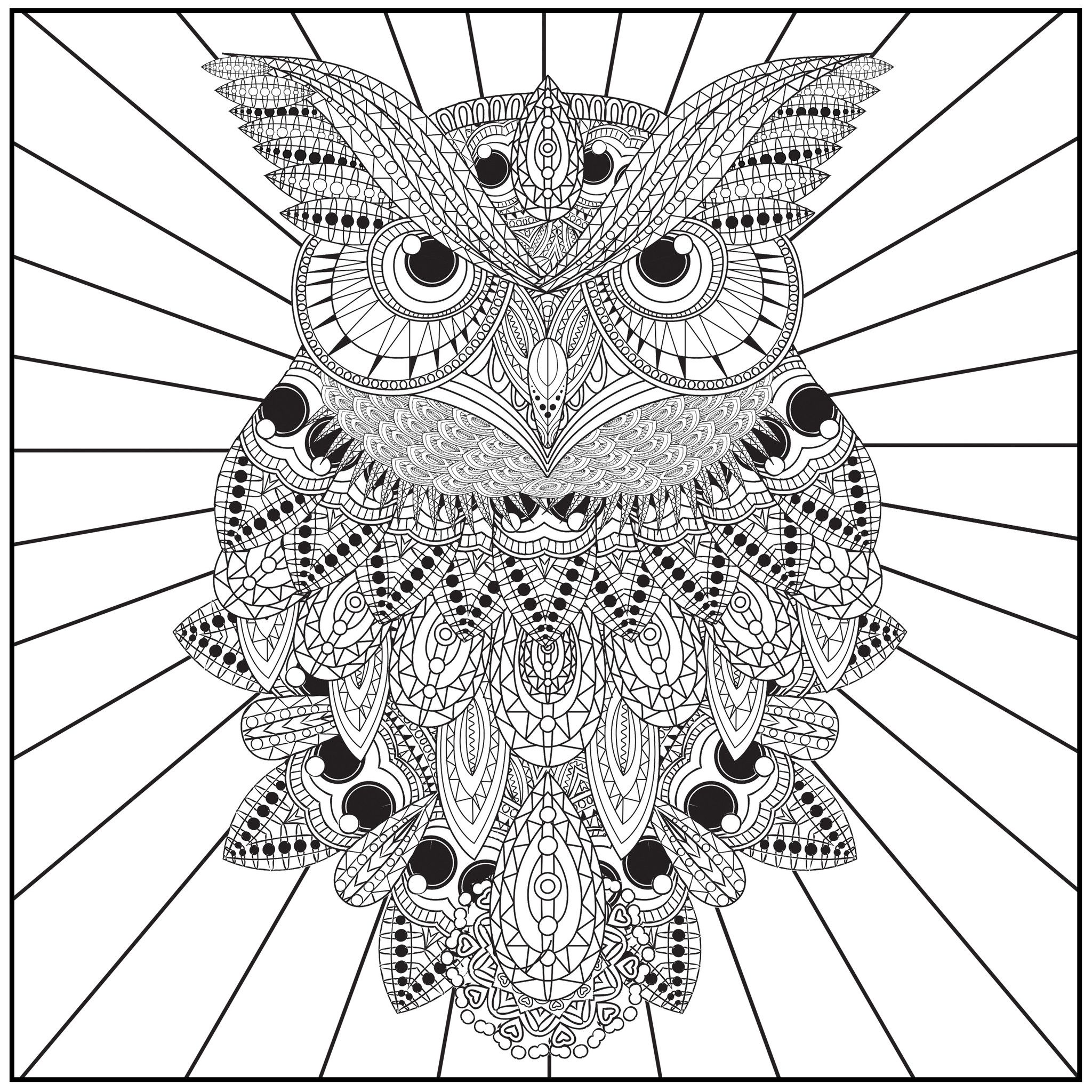2048x2048 Color With Music Owls Of The Night Adult Coloring Book (Blank Page