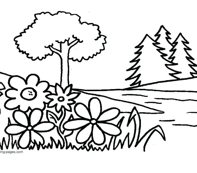 678x598 Flower Garden Coloring Page Garden Pictures To Color Garden