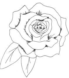236x266 Rose And Skull Drawing Tattoo