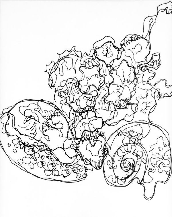 600x754 Semi Blind Contour Drawing By Jrathage