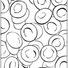 234x234 Blood Cell Coloring Pages White Blood Cell Coloring Page