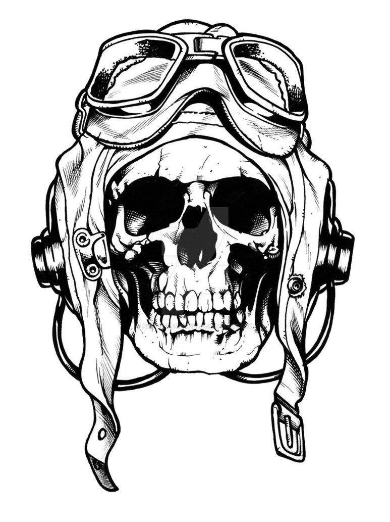 773x1033 Skull Sketch By Art Of Brainspill